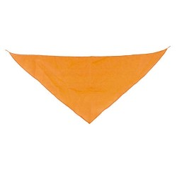 Pañoleta Triangular Na